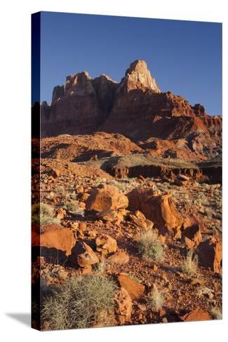 Vermilion Cliffs National Monument, Utah, Usa-Rainer Mirau-Stretched Canvas Print