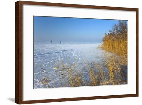 Europe, Germany, Steinhude, Steinhuder Meer, Ice Cover, Reed, Winter-Chris Seba-Framed Art Print