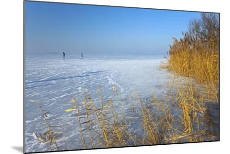 Europe, Germany, Steinhude, Steinhuder Meer, Ice Cover, Reed, Winter-Chris Seba-Mounted Photographic Print