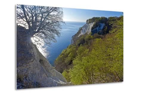 Europe, Germany, Mecklenburg-Western Pomerania, Island RŸgen, Chalk Cliff-Chris Seba-Metal Print