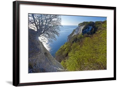Europe, Germany, Mecklenburg-Western Pomerania, Island RŸgen, Chalk Cliff-Chris Seba-Framed Art Print