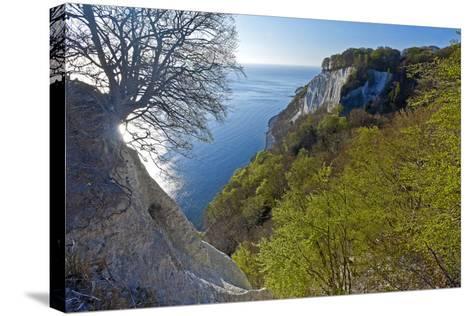 Europe, Germany, Mecklenburg-Western Pomerania, Island RŸgen, Chalk Cliff-Chris Seba-Stretched Canvas Print