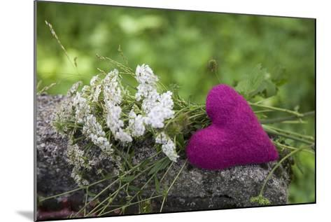 Heart, Pink, Flowers, Wild Chervil, Green-Andrea Haase-Mounted Photographic Print