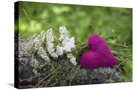 Heart, Pink, Flowers, Wild Chervil, Green-Andrea Haase-Stretched Canvas Print
