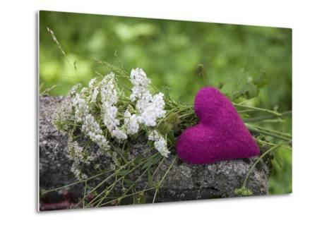 Heart, Pink, Flowers, Wild Chervil, Green-Andrea Haase-Metal Print