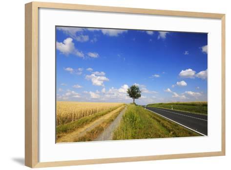 Wheat Field, Summer, Marktheidenfeld (Town), Franconia, Bavaria, Germany-Raimund Linke-Framed Art Print