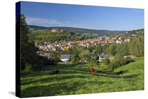 Germany, Hessen, Northern Hessen, Spangenberg, Townscape, Meadow, Cattle, Bison Herd, Grazing-Chris Seba-Stretched Canvas Print