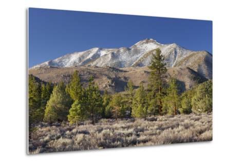 Red Mountain, Sierra Nevada, California, Usa-Rainer Mirau-Metal Print