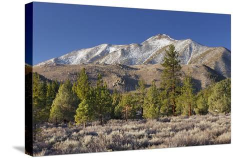 Red Mountain, Sierra Nevada, California, Usa-Rainer Mirau-Stretched Canvas Print