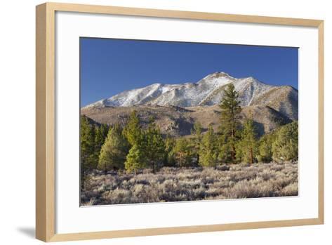 Red Mountain, Sierra Nevada, California, Usa-Rainer Mirau-Framed Art Print