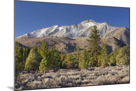 Red Mountain, Sierra Nevada, California, Usa-Rainer Mirau-Mounted Photographic Print