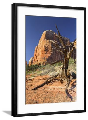 Cathedral Rock, Sedona, Arizona, Usa-Rainer Mirau-Framed Art Print