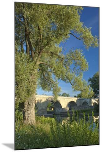 Germany, Bavaria, Regensburg, Danube Meadows, Jahn Island-Chris Seba-Mounted Photographic Print