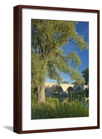 Germany, Bavaria, Regensburg, Danube Meadows, Jahn Island-Chris Seba-Framed Art Print