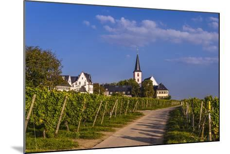 Germany, Hesse, Main-Taunus District, Hochheim Am Main, Vineyards-Udo Siebig-Mounted Photographic Print