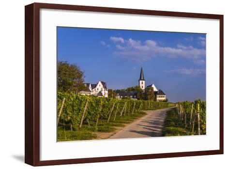 Germany, Hesse, Main-Taunus District, Hochheim Am Main, Vineyards-Udo Siebig-Framed Art Print