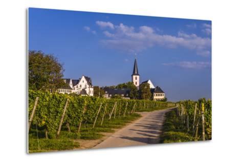 Germany, Hesse, Main-Taunus District, Hochheim Am Main, Vineyards-Udo Siebig-Metal Print