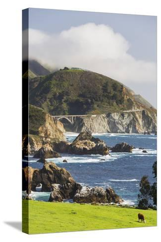 Rocky Point, Big Sur, Cabrillo Highway 1, California, Usa-Rainer Mirau-Stretched Canvas Print