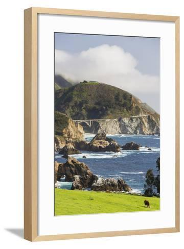 Rocky Point, Big Sur, Cabrillo Highway 1, California, Usa-Rainer Mirau-Framed Art Print