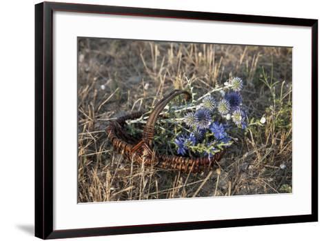 Meadow Flowers in the Basket-Andrea Haase-Framed Art Print