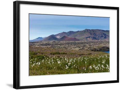 Peninsula Snaefellsnes, Berserkjehraun-Catharina Lux-Framed Art Print