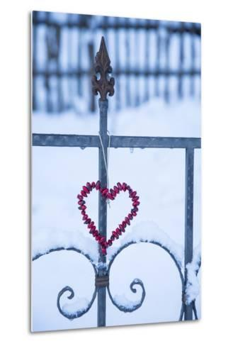 Heart on the Fence and Snow-Andrea Haase-Metal Print