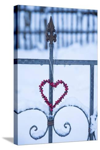 Heart on the Fence and Snow-Andrea Haase-Stretched Canvas Print