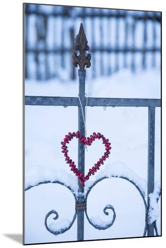 Heart on the Fence and Snow-Andrea Haase-Mounted Photographic Print