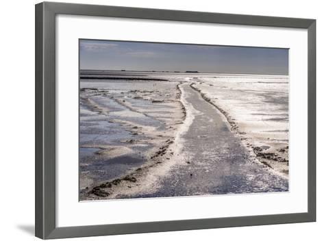 Germany, Schleswig-Holstein, North Frisia, North Frisian Marsh, Ockholm-Udo Siebig-Framed Art Print