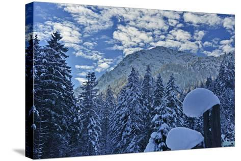 Mountain Forest with Lofer Mountains-Stefan Sassenrath-Stretched Canvas Print