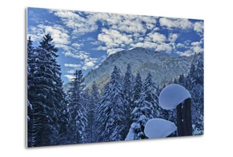 Mountain Forest with Lofer Mountains-Stefan Sassenrath-Metal Print