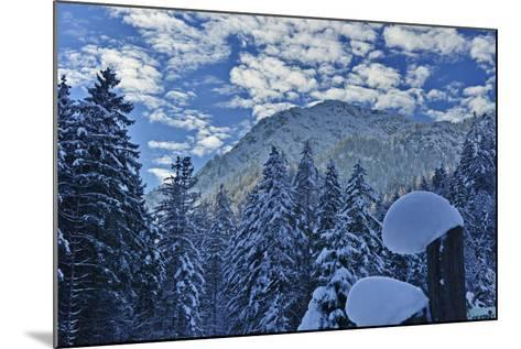 Mountain Forest with Lofer Mountains-Stefan Sassenrath-Mounted Photographic Print