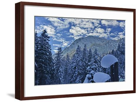 Mountain Forest with Lofer Mountains-Stefan Sassenrath-Framed Art Print