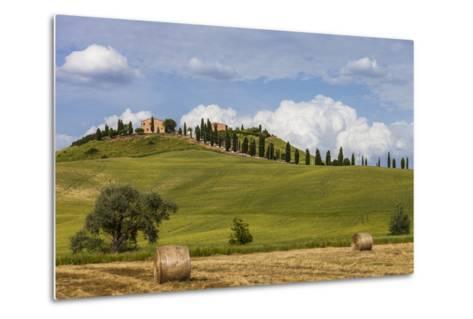Europe, Italy, Tuscany, Landscape in Le Crete-Gerhard Wild-Metal Print