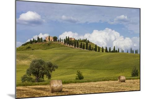 Europe, Italy, Tuscany, Landscape in Le Crete-Gerhard Wild-Mounted Photographic Print