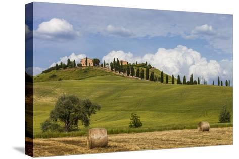Europe, Italy, Tuscany, Landscape in Le Crete-Gerhard Wild-Stretched Canvas Print