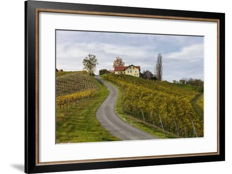 Europe, Austria, Styria, South-Styrian Wine Route, Vineyards, Houses-Gerhard Wild-Framed Art Print