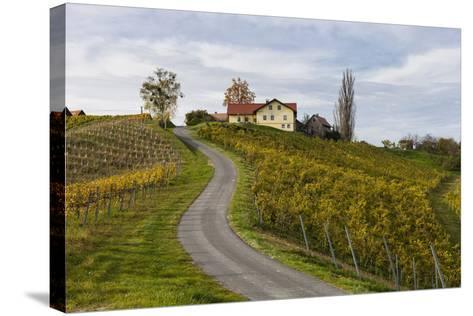 Europe, Austria, Styria, South-Styrian Wine Route, Vineyards, Houses-Gerhard Wild-Stretched Canvas Print