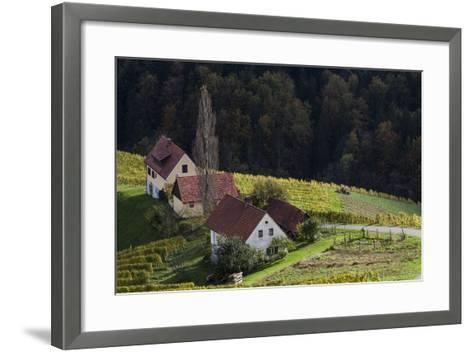 Europe, Austria, Styria, South-Styrian Wine Route, Wine Farm-Gerhard Wild-Framed Art Print