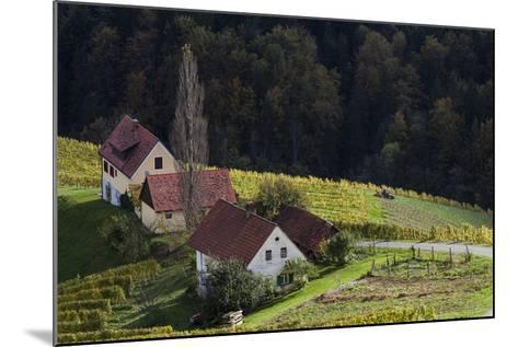 Europe, Austria, Styria, South-Styrian Wine Route, Wine Farm-Gerhard Wild-Mounted Photographic Print