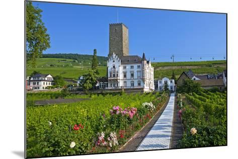 Europe, Germany, Hesse, Rheingau (Area), RŸdesheim on the Rhine-Chris Seba-Mounted Photographic Print