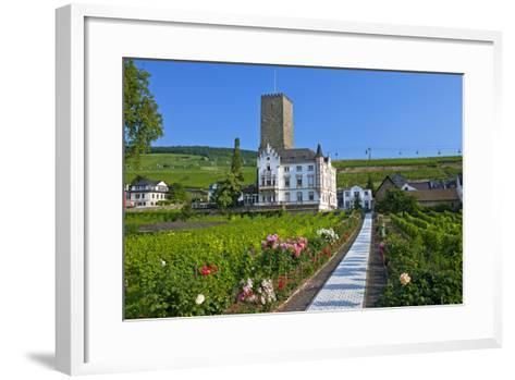 Europe, Germany, Hesse, Rheingau (Area), RŸdesheim on the Rhine-Chris Seba-Framed Art Print