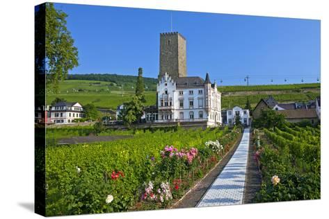 Europe, Germany, Hesse, Rheingau (Area), RŸdesheim on the Rhine-Chris Seba-Stretched Canvas Print