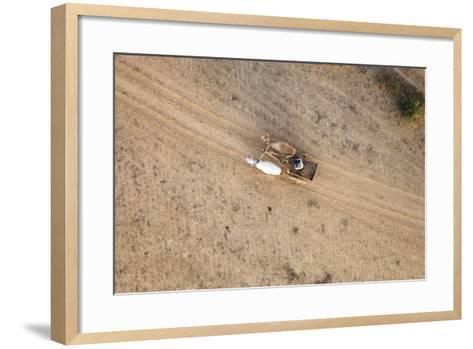 Aerial View of Farmer on Dirt Road in Bagan, Myanmar-Harry Marx-Framed Art Print