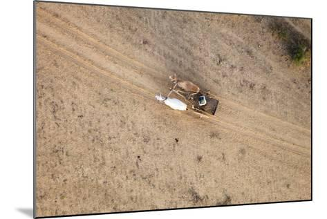 Aerial View of Farmer on Dirt Road in Bagan, Myanmar-Harry Marx-Mounted Photographic Print