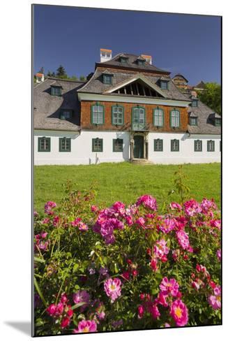 Luberegg Castle, Roses, Wachau, Lower Austria, Austria-Rainer Mirau-Mounted Photographic Print