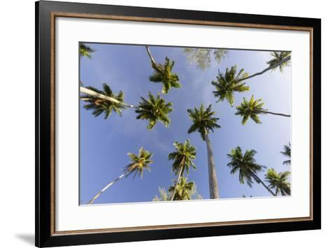 Coconut Trees, Plantation L'Union Estate, La Digue Island, the Seychelles-Rainer Mirau-Framed Art Print