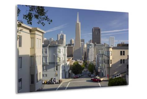 Montgomery Street, Transamerica Pyramid, Telegraph Hill, San Francisco, California, Usa-Rainer Mirau-Metal Print