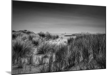The Netherlands, Frisia, Terschelling, Dunes, Beach, Sea-Ingo Boelter-Mounted Photographic Print