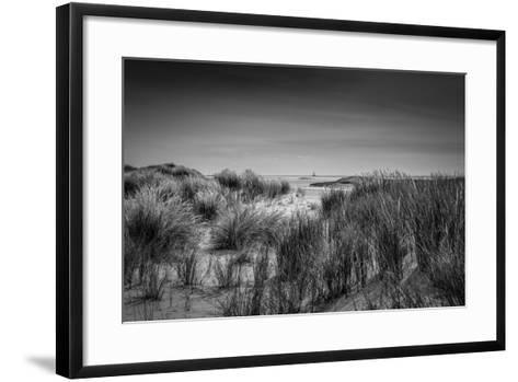 The Netherlands, Frisia, Terschelling, Dunes, Beach, Sea-Ingo Boelter-Framed Art Print